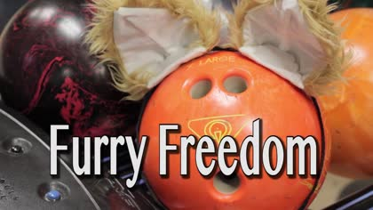 Furry Freedom