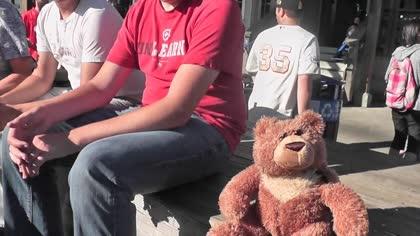 Telepresence Teddy Bear