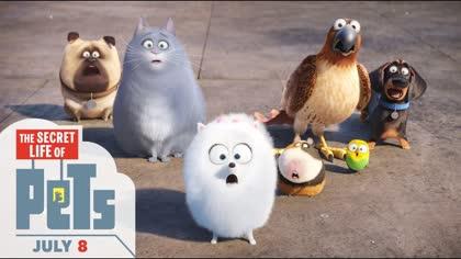 Secret Life Of Pets, Trailer #2