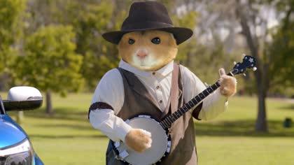 2016 Kia Soul Hamsters