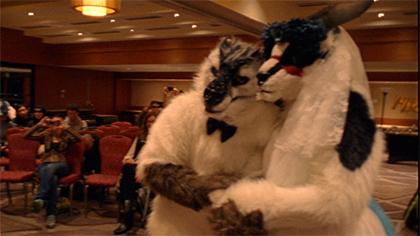 A Furry Wedding