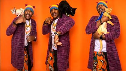 Cat Rapper: Double Duty Cat Litter
