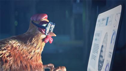 Solidarity Hens