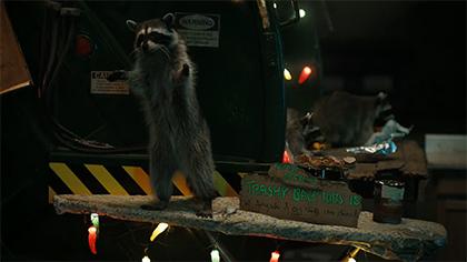 Raccoons Sequel: GEICO