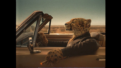 Cheetah Driving High
