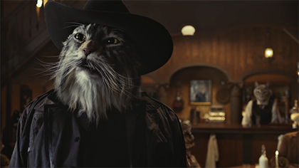 Commercial: Saloon Cat